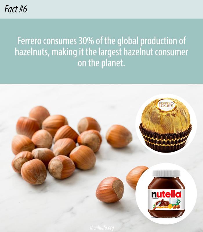 World's Largest Hazelnut Consumer