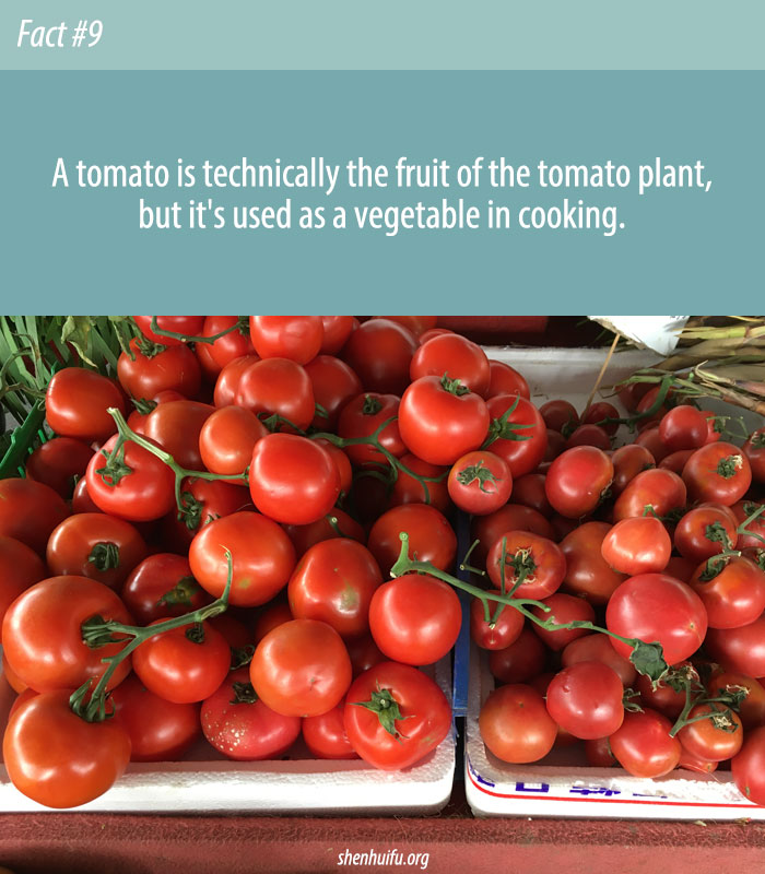 Are Tomatoes Fruits or Vegetables?