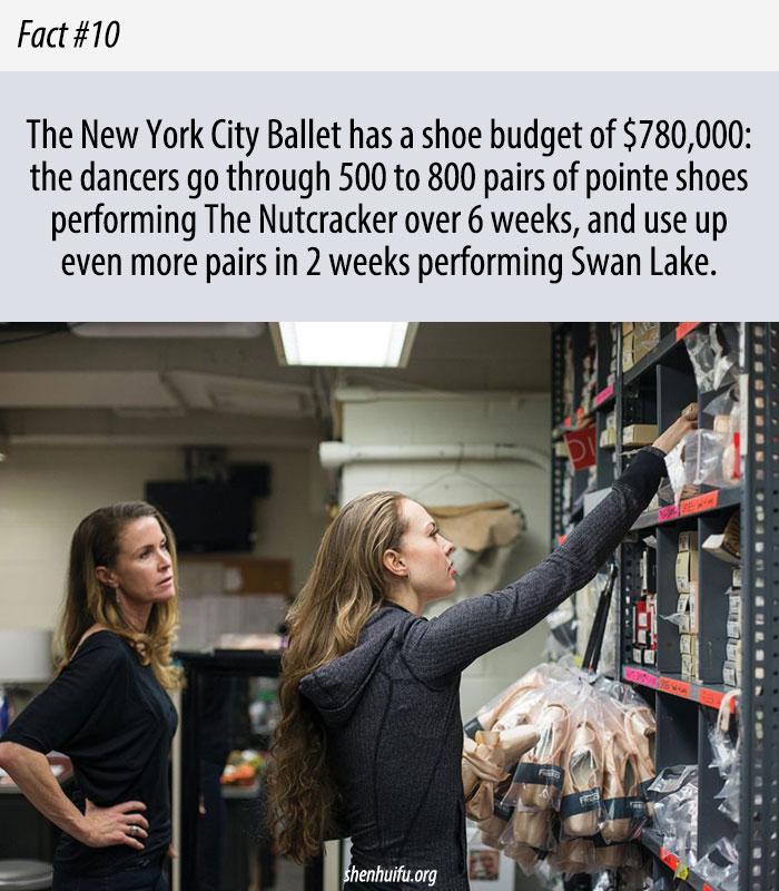 Ballet Shoes Budget