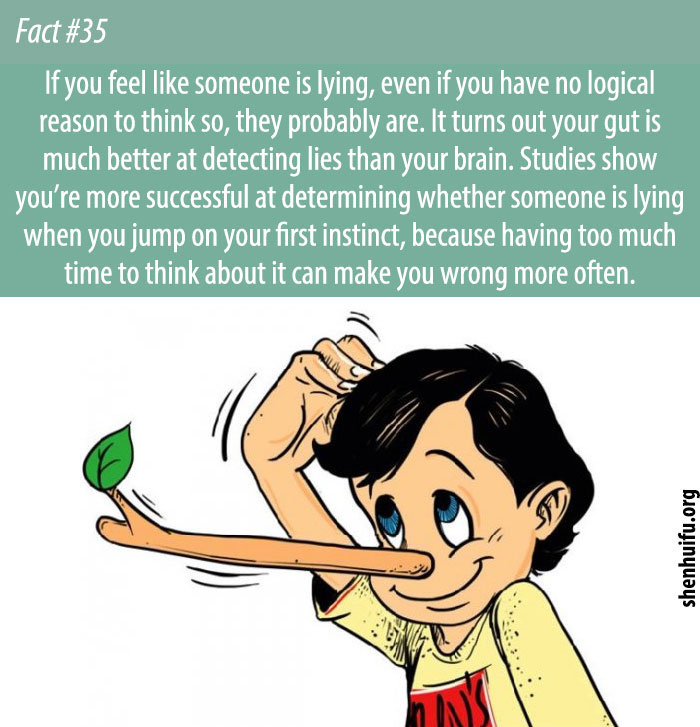 If you feel like someone is lying, even if you have no logical reason to think so, they probably are.