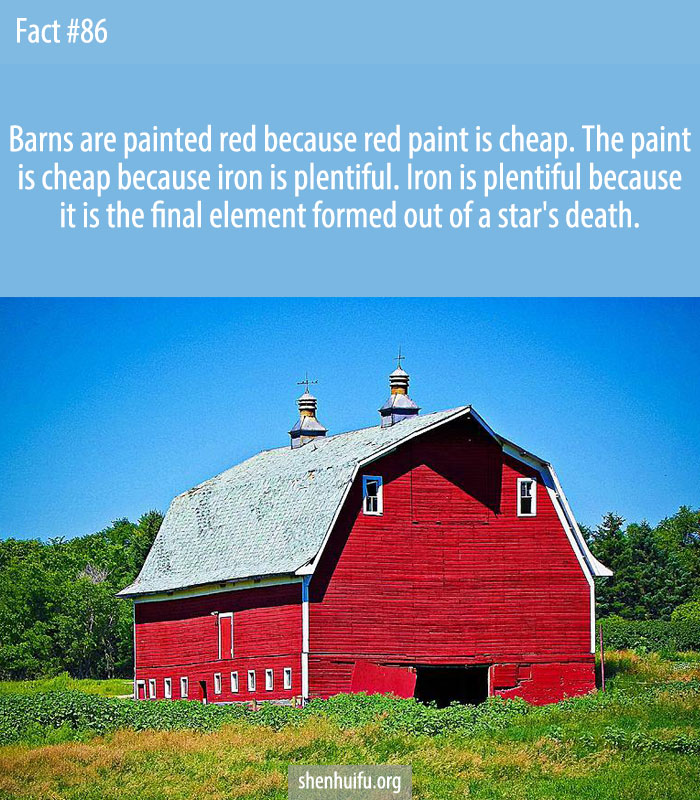 Barns are painted red because red paint is cheap.