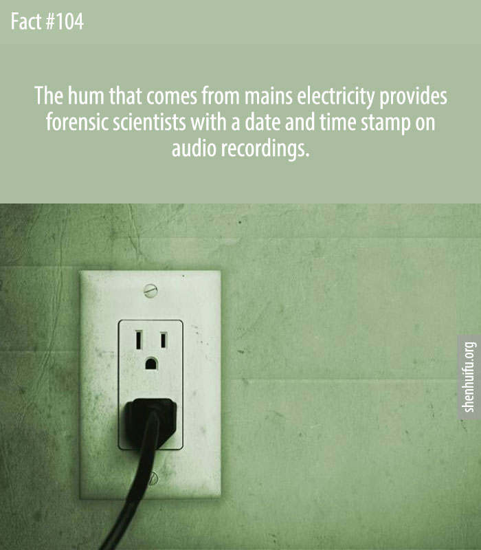 The hum that comes from mains electricity provides forensic scientists with a date and time stamp on audio recordings.
