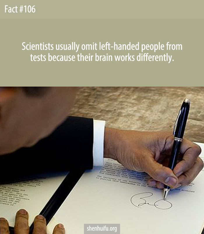 Scientists usually omit left-handed people from tests because their brain works differently.