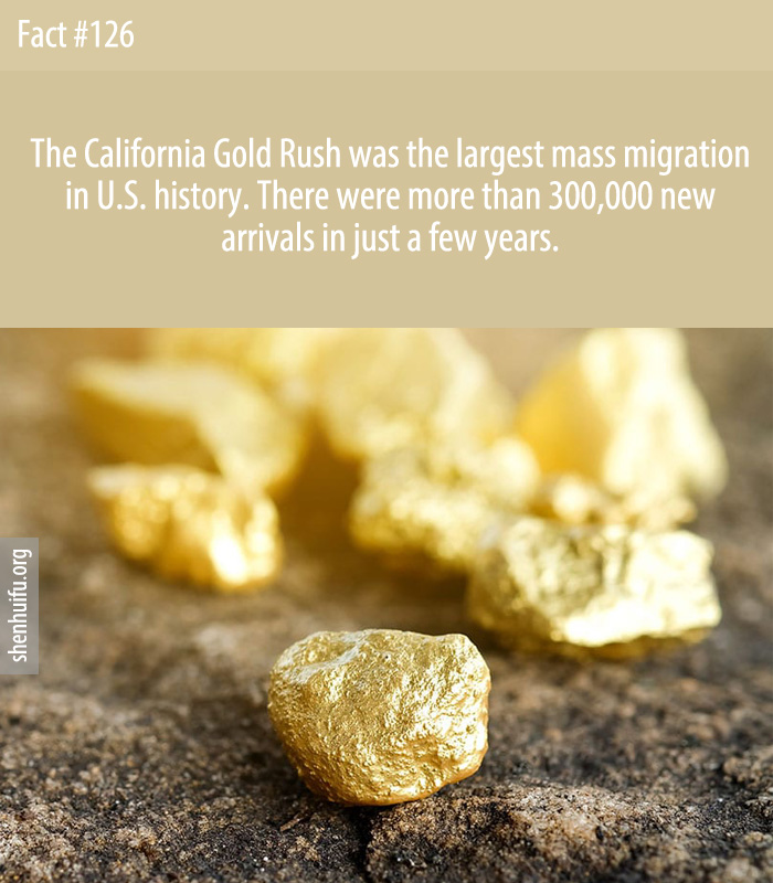 The California Gold Rush was the largest mass migration in U.S. history. There were more than 300,000 new arrivals in just a few years.
