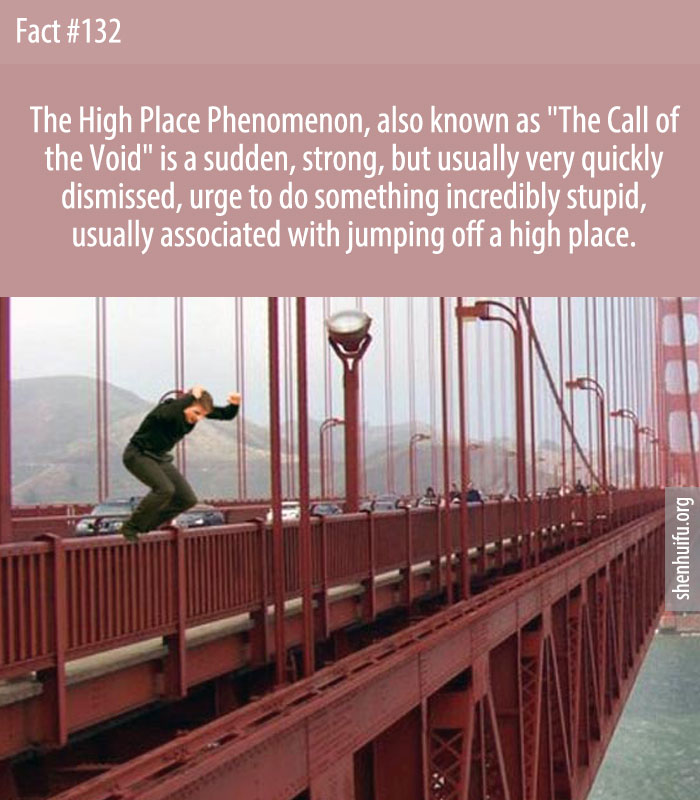 The 'high place phenomenon' is the sudden urge to jump off a high place, such as a bridge.