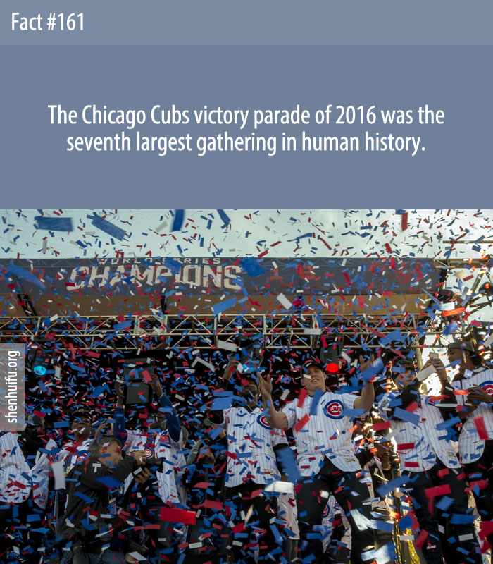 The Chicago Cubs victory parade of 2016 was the seventh largest gathering in human history.