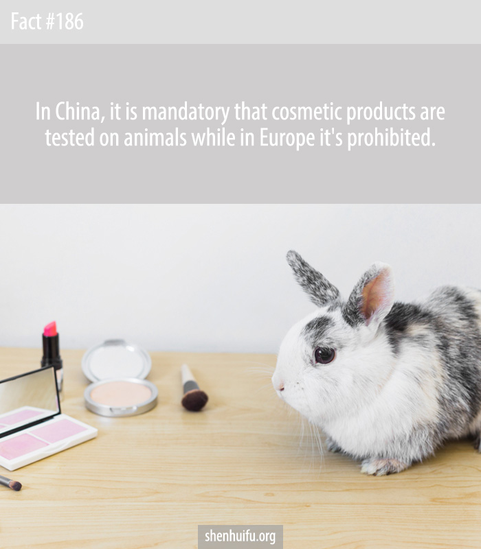 In China, it is mandatory that cosmetic products are tested on animals while in Europe it's prohibited.