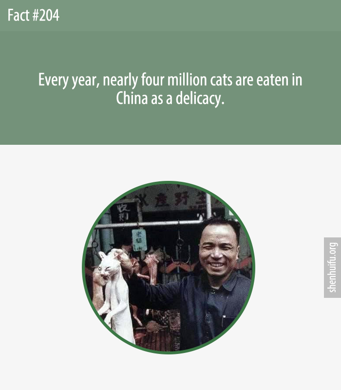 Every year, nearly four million cats are eaten in China as a delicacy.