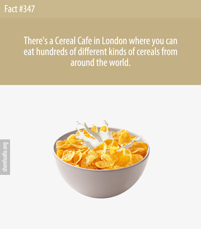 There's a Cereal Cafe in London where you can eat hundreds of different kinds of cereals from around the world.