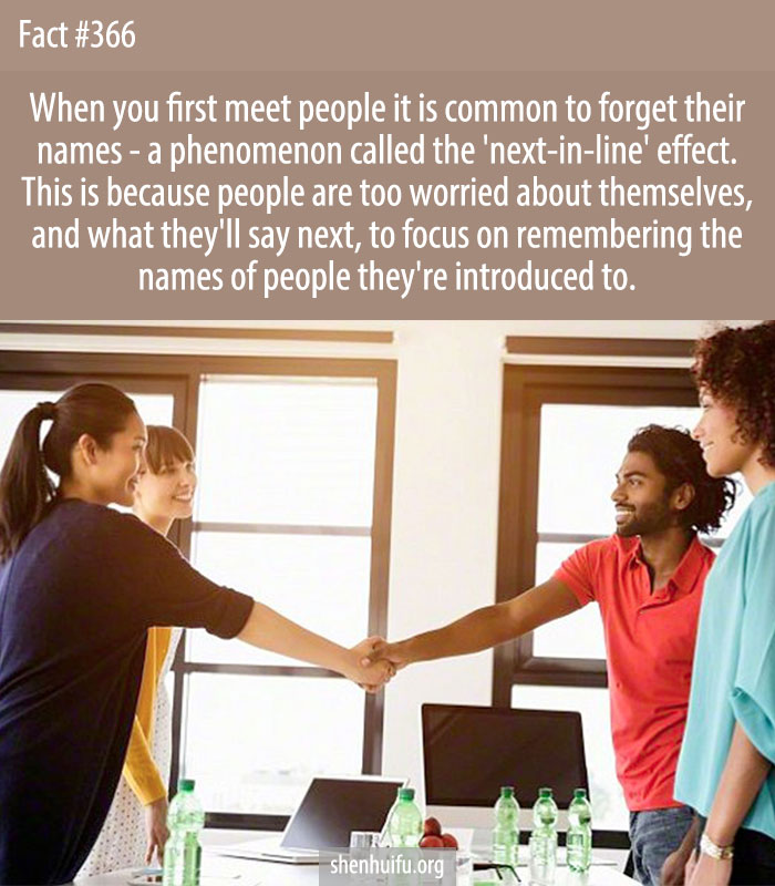 When you first meet people it is common to forget their names - a phenomenon called the 'next-in-line' effect. This is because people are too worried about themselves, and what they'll say next, to focus on remembering the names of people they're introduced to.